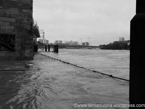 Wacht am Rhein 2013 06 01_0395