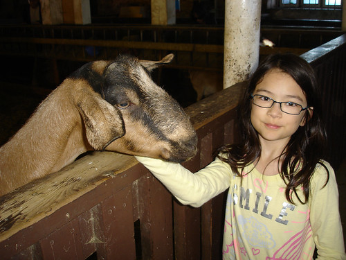 bronte creek - kid's farm and petting zoo