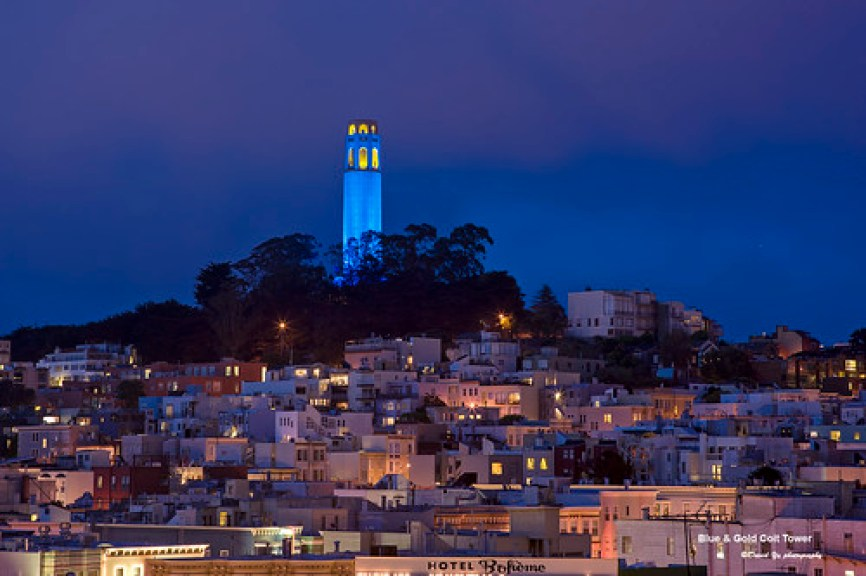 Blue & Gold Coit Tower