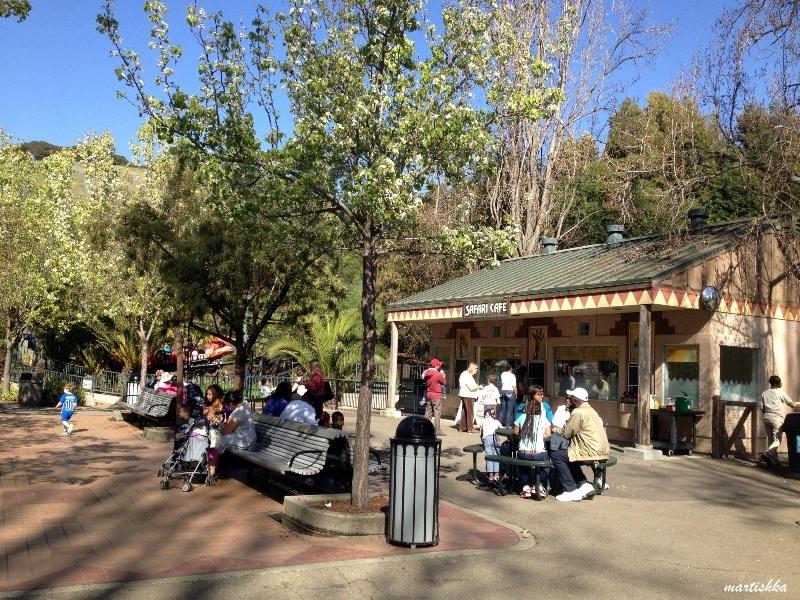 Oakland Zoo (48)