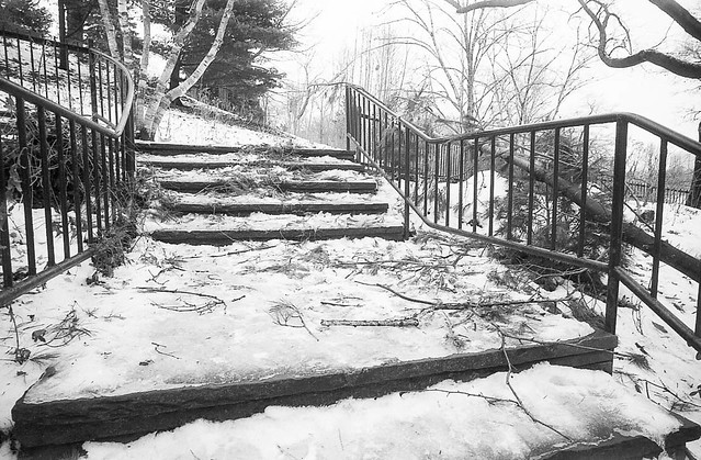 28 Dec 2013_030.jpg