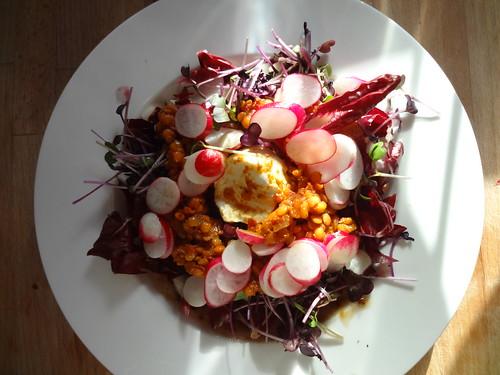 lentil, leaf & labneh lunch salad by the james kitchen