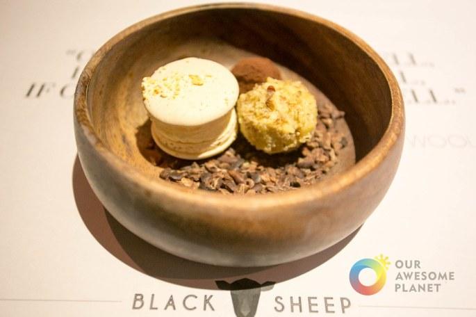BLACK SHEEP - BGC - Our Awesome Planet-70.jpg