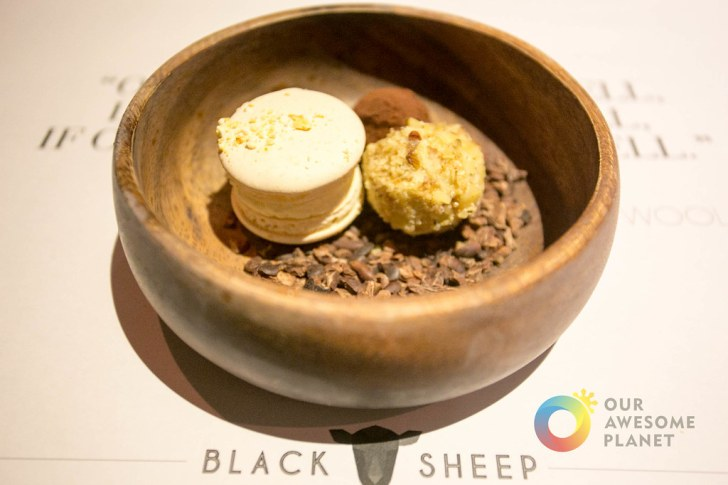 BLACK SHEEP - BGC - Our Awesome Planet-70.jpg