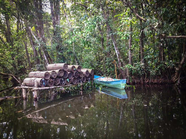 Exploring Rio Dulce-5