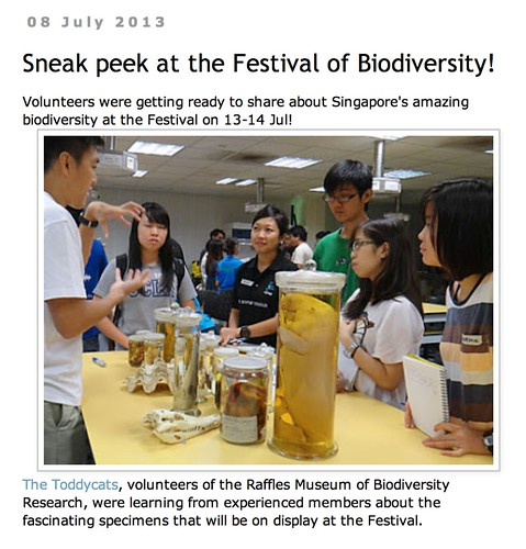 wild shores of singapore: Sneak peek at the Festival of Biodiversity!