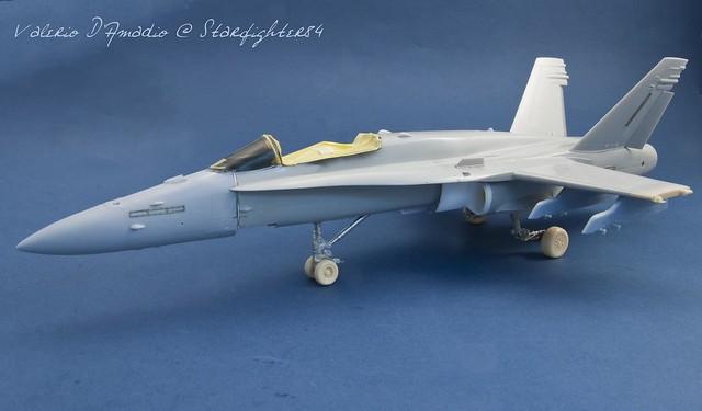Hornet 102