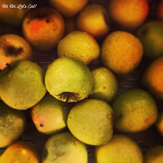 Apple Jelly _ Apples