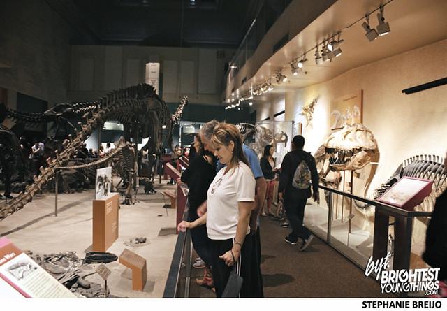 Smithsonian Dinosaur Exhibit Photos Brightest Young Things Stephanie Breijo10