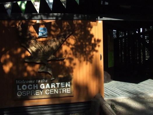 Loch Garten Osprey Centre 1