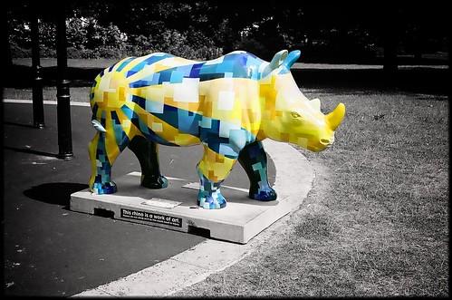 Go Rhinos:Sunny by Davidap2009