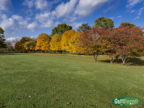 Fall Fairways Green Oaks-1020149