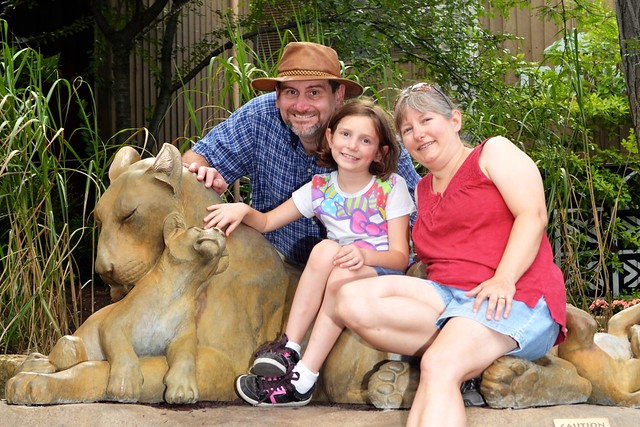Lion Family and My Family