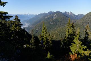Black Mountain, 20 Oct 2013