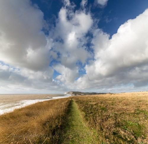 Freshwater Bay Landscape