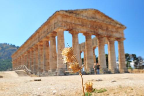 Segesta (Sicily), luglio 2013 061
