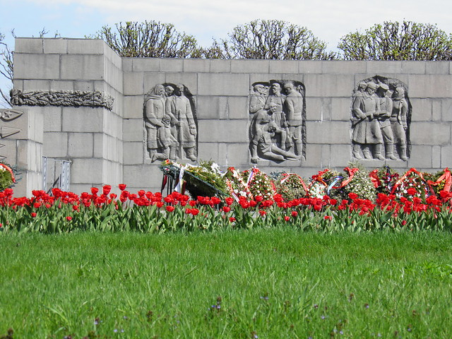 Красные тюльпаны у мемориала // Red tulips by memorial