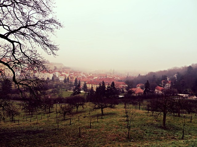 Garden of Petrin Hill, Prague, visit Prague in Winter