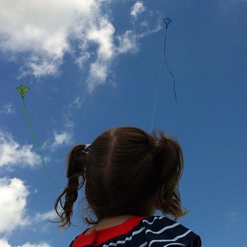 Angry bird #kites