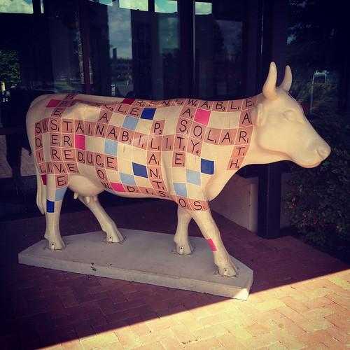 scrabble cow!