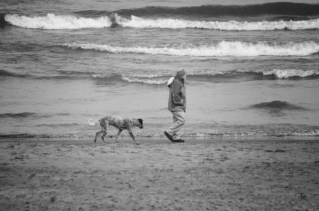 Man and friend - BW