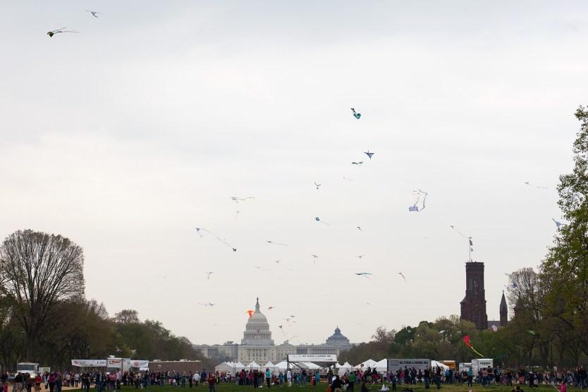 Kite Festival, National Mall.