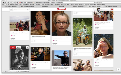 WILD Pinterest screen shot 1