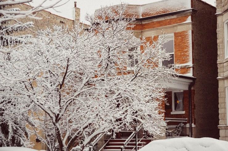 Snowy March Day