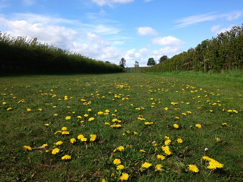 Sunningdale, Ascot, West Berkshire