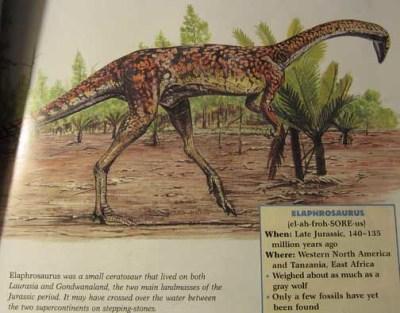 _Prehistoric World_ Series - Ceratosaurus