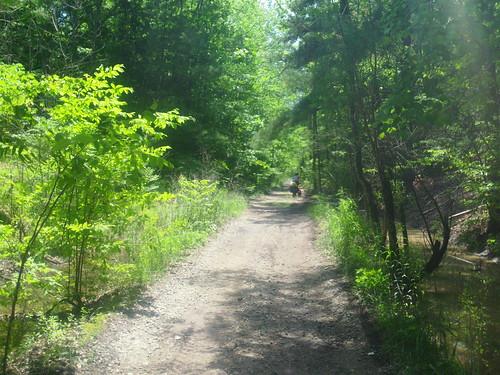 off roading trail short cut