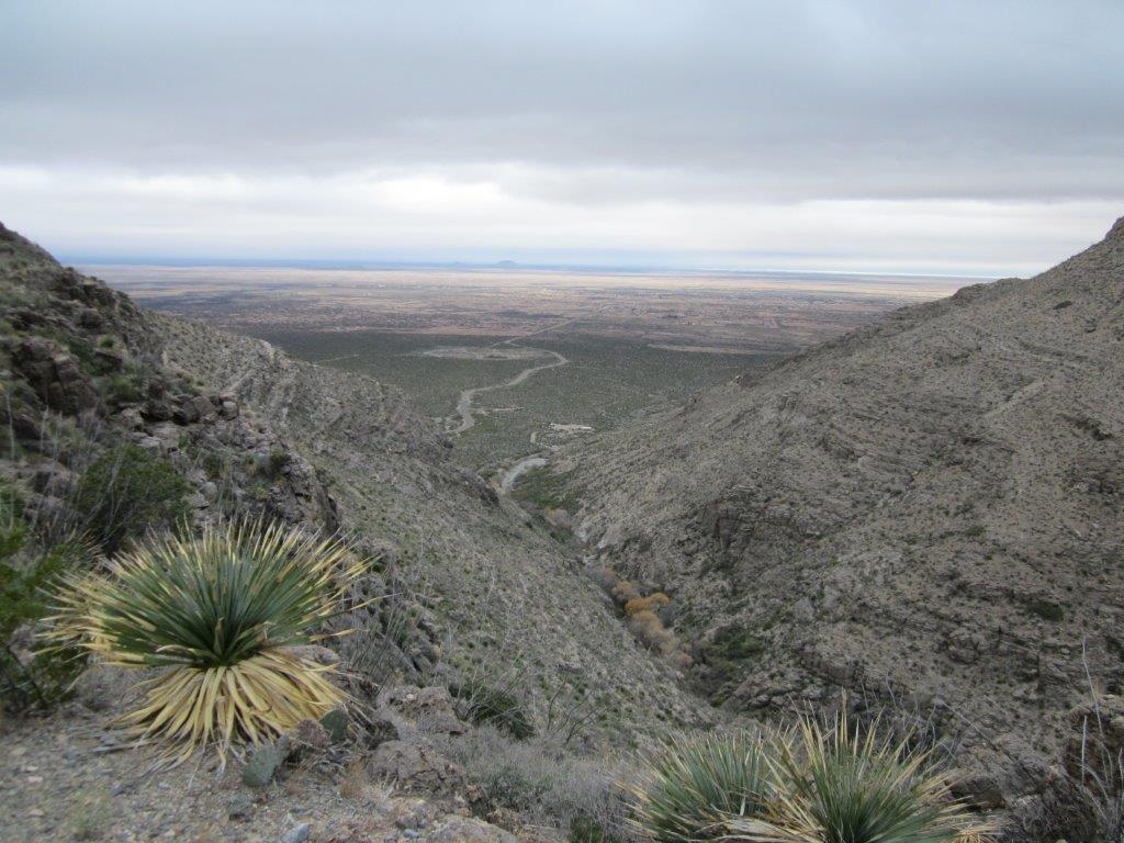 View from the Dog Canyon trail