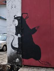 Georgetown street art- painted 19