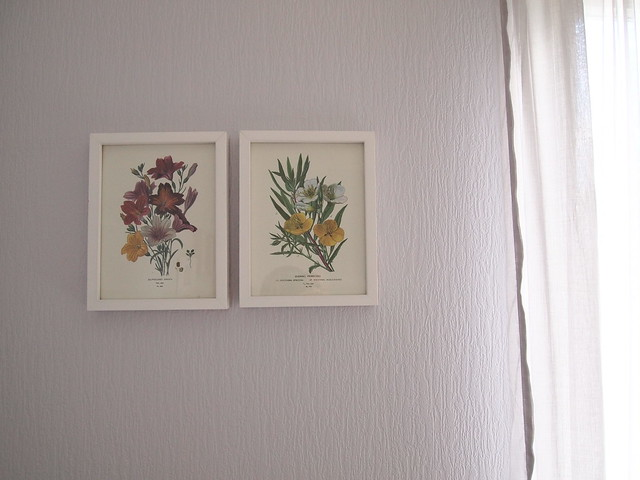 Flower prints from Rome.
