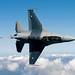 Pakistan Air Force F-16