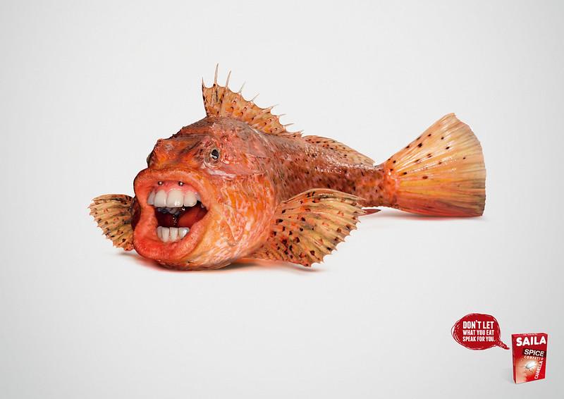 Saila Fish