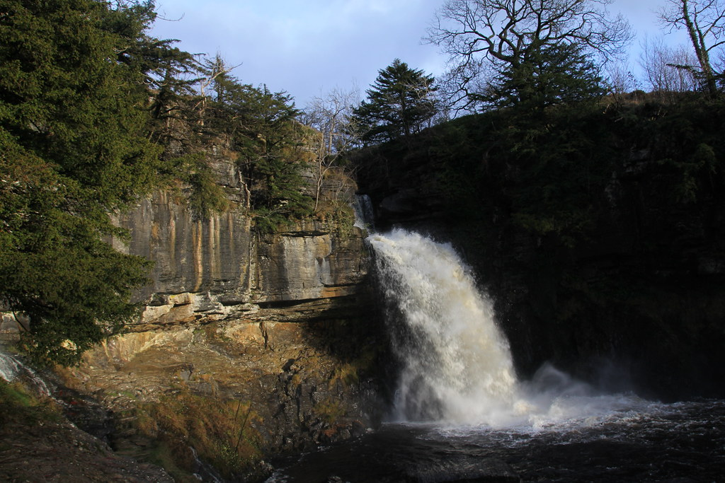 Thornton Force