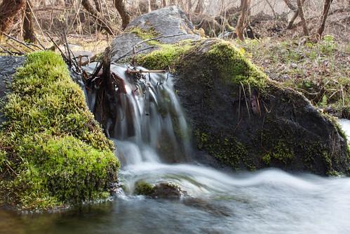 River flow (@Fukushima)