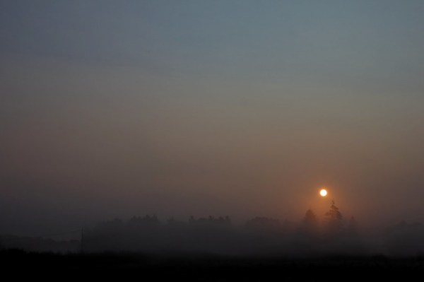 Levé de soleil dans la brume