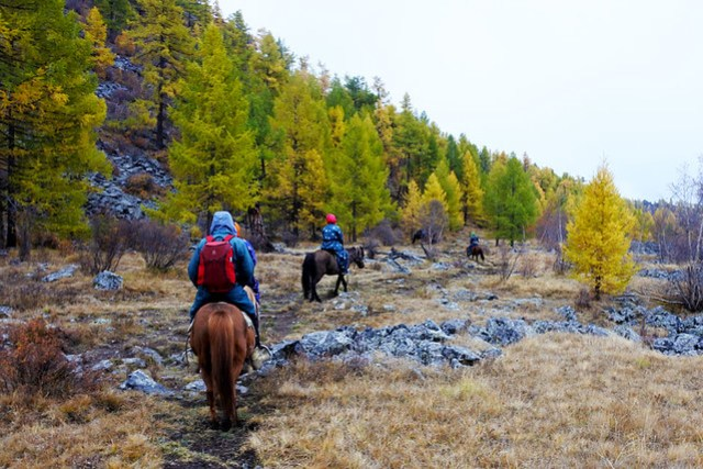 Horse trek in Mongolia IKILOMALLA matkablogi travel blog (5)