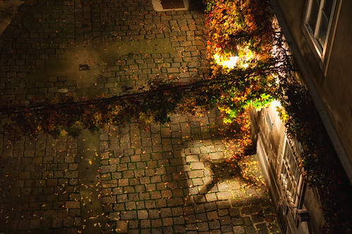 Autumn colors at night by stst31415