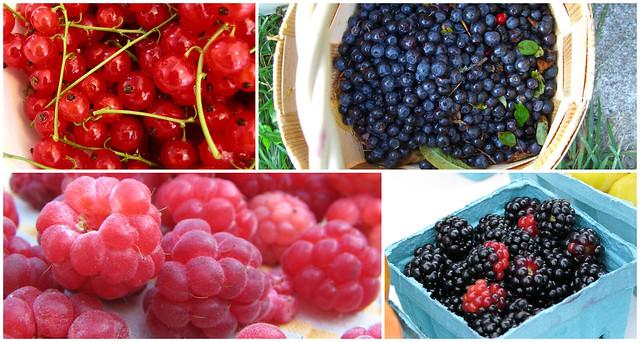 mixed berries3