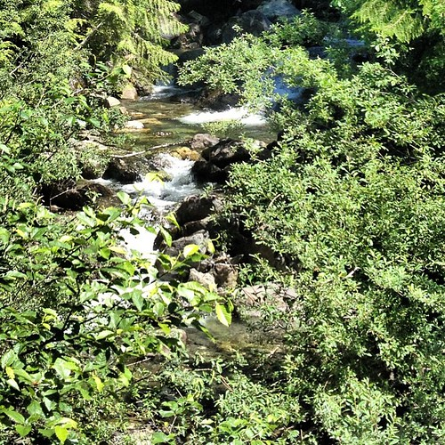 Little stream by the road by @MySoDotCom