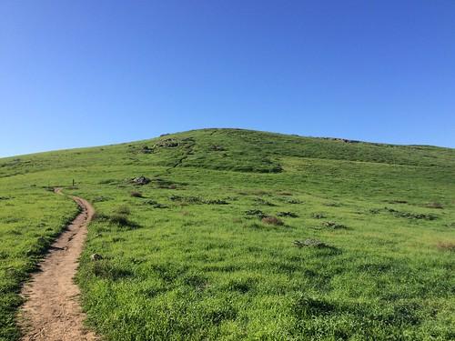 Quail Hill
