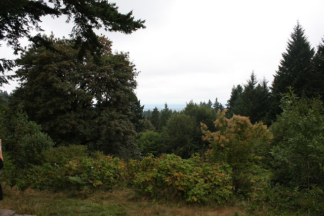 Portland 022