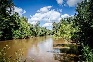 Oconee River - Watkinsville