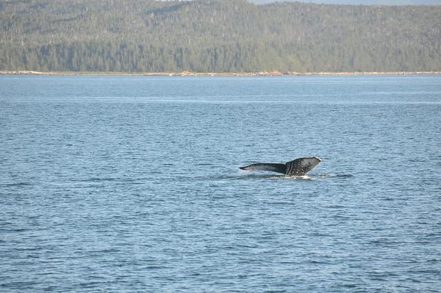 Alaska Trip-269
