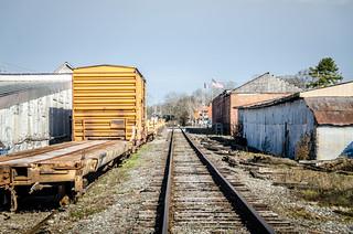 Lavonia Tracks