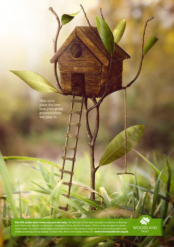 treehouse_workings_a4_aotw