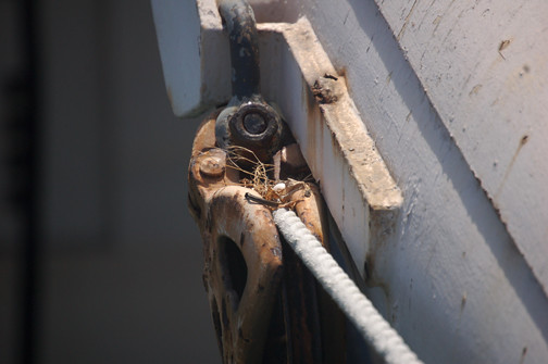 bowsprit nest